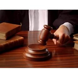 Закон об обществах с ограниченной ответственностью опубликовали в парламентской газете